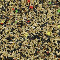 Witte Molen Canary Ξηρά Τροφή 1kg