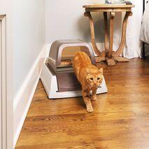 PetSafe ScoopFree Αυτοκαθαριζόμενη Τουαλέτα Γάτας