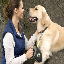 Flexi Πτυσσόμενος Οδηγός Περιπάτου για Σκύλους Neon Reflect  Giant L Μαύρο 10m - 50kg