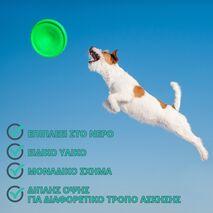Δίσκος φρίσμπι Flying Disk FLYBER Πράσινος 22 cm