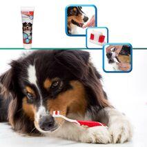 Beaphar Οδοντόβουρτσα για Σκύλους 100ml