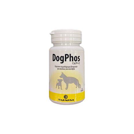 Tafarm Dog Phos Ca/P=2 Συμπλήρωμα Διατροφής Ανάπτυξης για Σκύλους και Κουτάβια 70 δισκία