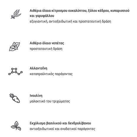Intuizoon Anophelis Αρωματικό Σπρέι για Φυσική Προστασία 300ml