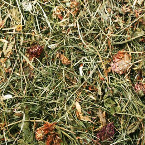 JR Farm Χόρτο Μηδικής - Κόκκινο Τριφύλλι 500gr