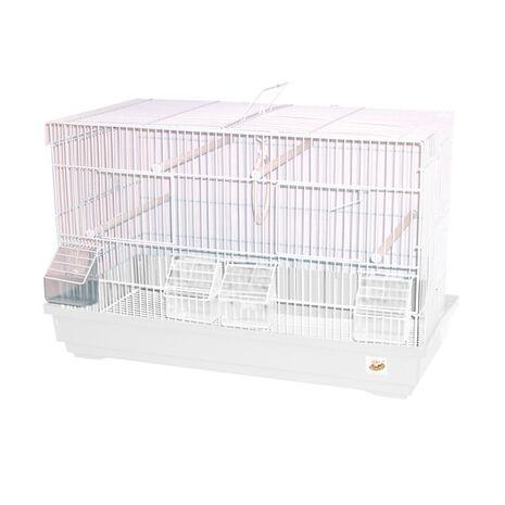 Κλουβί για Πουλιά Zευγαρώστρα 58x32x37cm