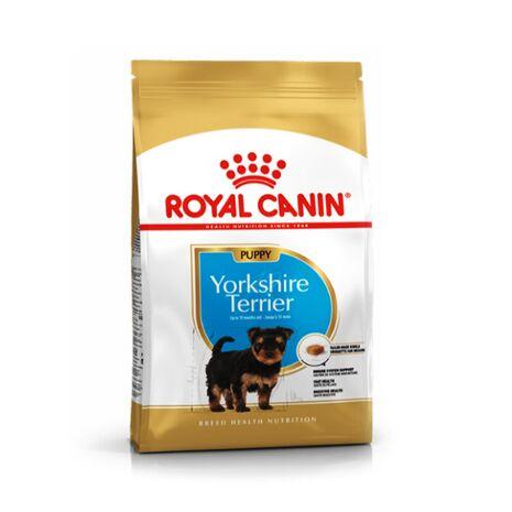 Royal Canin Puppy Yorkshire Terrier | Ξηρά Τροφή