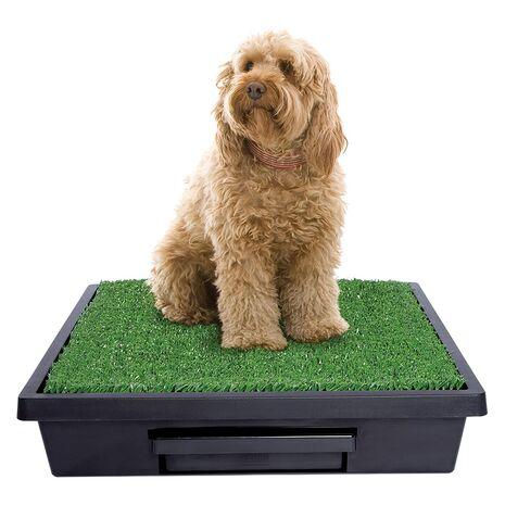 PetSafe Pet Loo - Τουαλέτα για Σκύλους με Γρασίδι 63x63cm