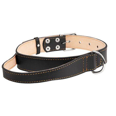 Collar Περιλαίμιο Δερμάτινο με Λαβή Μαύρο
