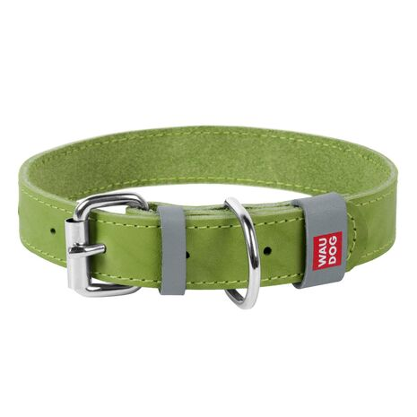 Collar Περιλαίμιο Δερμάτινο Πράσινο